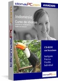Curso de indonesio avanzado