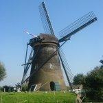 aprender holandés